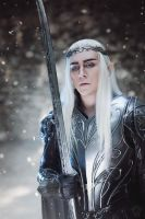 King Thranduil by TheIdeaFix