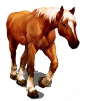 epona by ordinaryriches