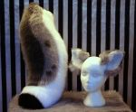 Iro ear and tail set by fenrirschild