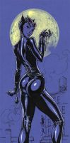 CatWoman TALL by J-Scott-Campbell