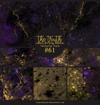 Textures pack #61 - the truth cannot be long hidde by lune-blanche