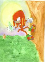 Knuckles by Hapo57