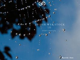 Spider Web Pack II Stock by Moonchilde-Stock