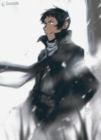 Lance in snow by SolKorra