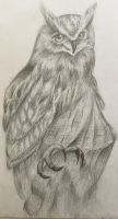 Owl I drew at art class (cause art block) by TheRoseOfMay