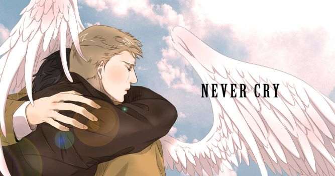 Never Cry by Pra88