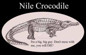 Reptile Buddies Nile Crocodile by UnicronHound