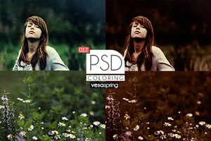 PSD Coloring 012 by vesaspring
