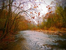 Autumn river by snaphappy101
