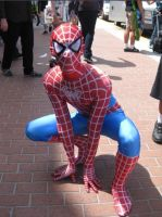 Comic Con '10: Spiderman by ShipperTrish