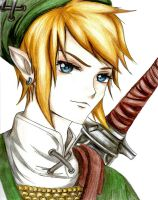Twilight Princess Link COMPLETE! by 9Mumei19
