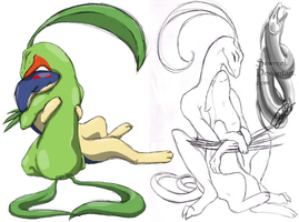 .::Grovyle and Quilava::.