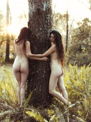 Tree Huggers by Queen-Kitty