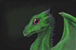 Baby Dragon by Shiray21