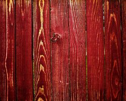 red wood texture 1 by redwolf518