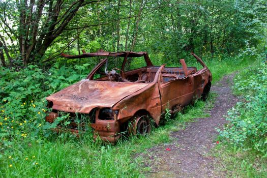 Burnt out Fiesta by Spinneyhead