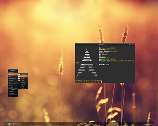 Arch Linux 2011-11-25 by Paaskehare