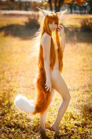 Horo, Spice and Wolf by Mariella-a