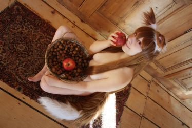 Horo - Spice and Wolf by Mylene-C