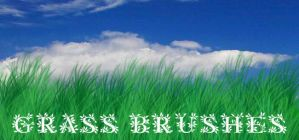 Grass +PS brushes+ by crazy-alchemist