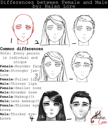 Differences Between Females and Males by HalanLore