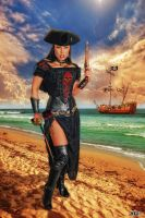 Asia DeVinyl Pirate Redux by Hollinger