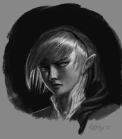 Link portrait speedy by edsfox