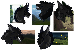 [WoR] Leto CP Sheet by Lykanos