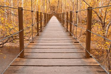 Golden Grove Bridge by somadjinn