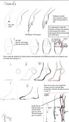 Doodled hands n feet tutorial by Caucasian-eagle