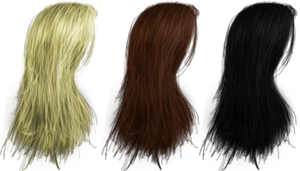 Hair PNG's 04 by Thy-Darkest-Hour