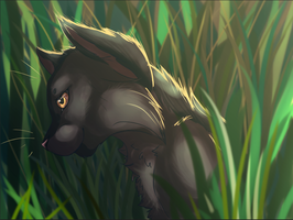 Dawn Light Seeps Through the Grass by CoilHeart
