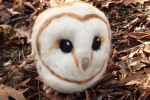 Barnowl Front1 by Maresy