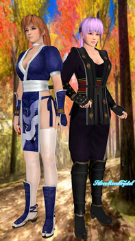 Dead or Alive 3 - Kasumi and Ayane by SilverMoonCrystal