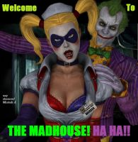 Welcome To The MADHOUSE by dnxpunk