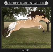 ES Muse 3990 by NorthEast-Stables