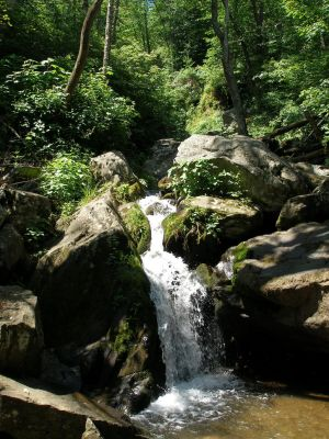 Waterfall 6 by Tejal