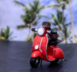 Sabbath - Red Moped Ride - 7136 by creative1978