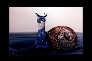 Water snail by stg123