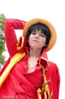 Pirate King | Monkey D. Luffy | Z | II by Wings-chan
