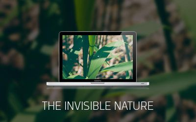 THE INVISIBLE NATURE by Clubberry