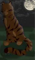 Tigerclaw by Harryn53012
