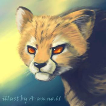 Cheetah by aun61