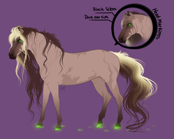 Mare Design Auction -OPEN- by Kaybutts
