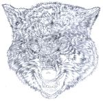 Wolf fur mapping study by micaeltattoo