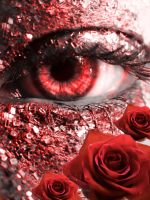 Red Roses by lovelife99